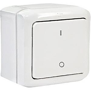 Выключатель двухполюсный IP44 Legrand Quteo белый
